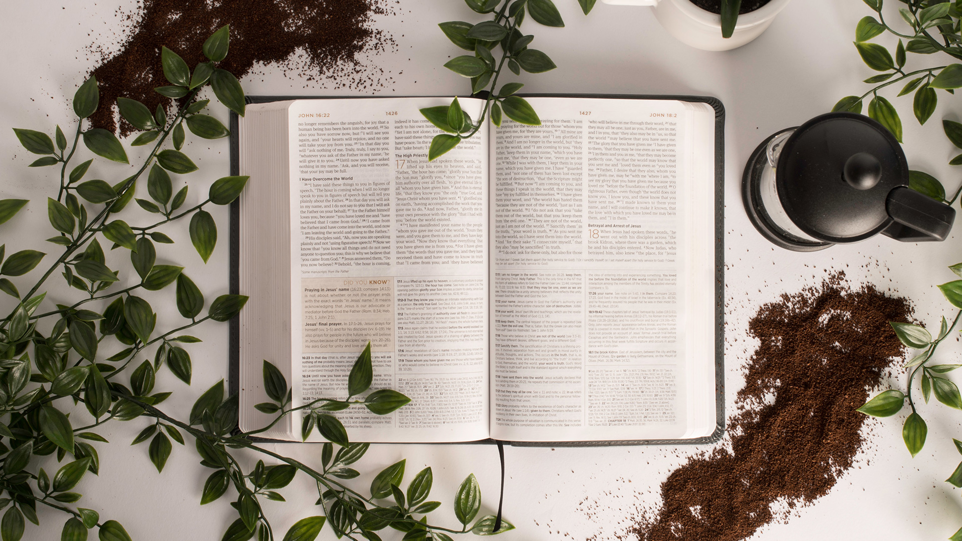 holy-bible-2