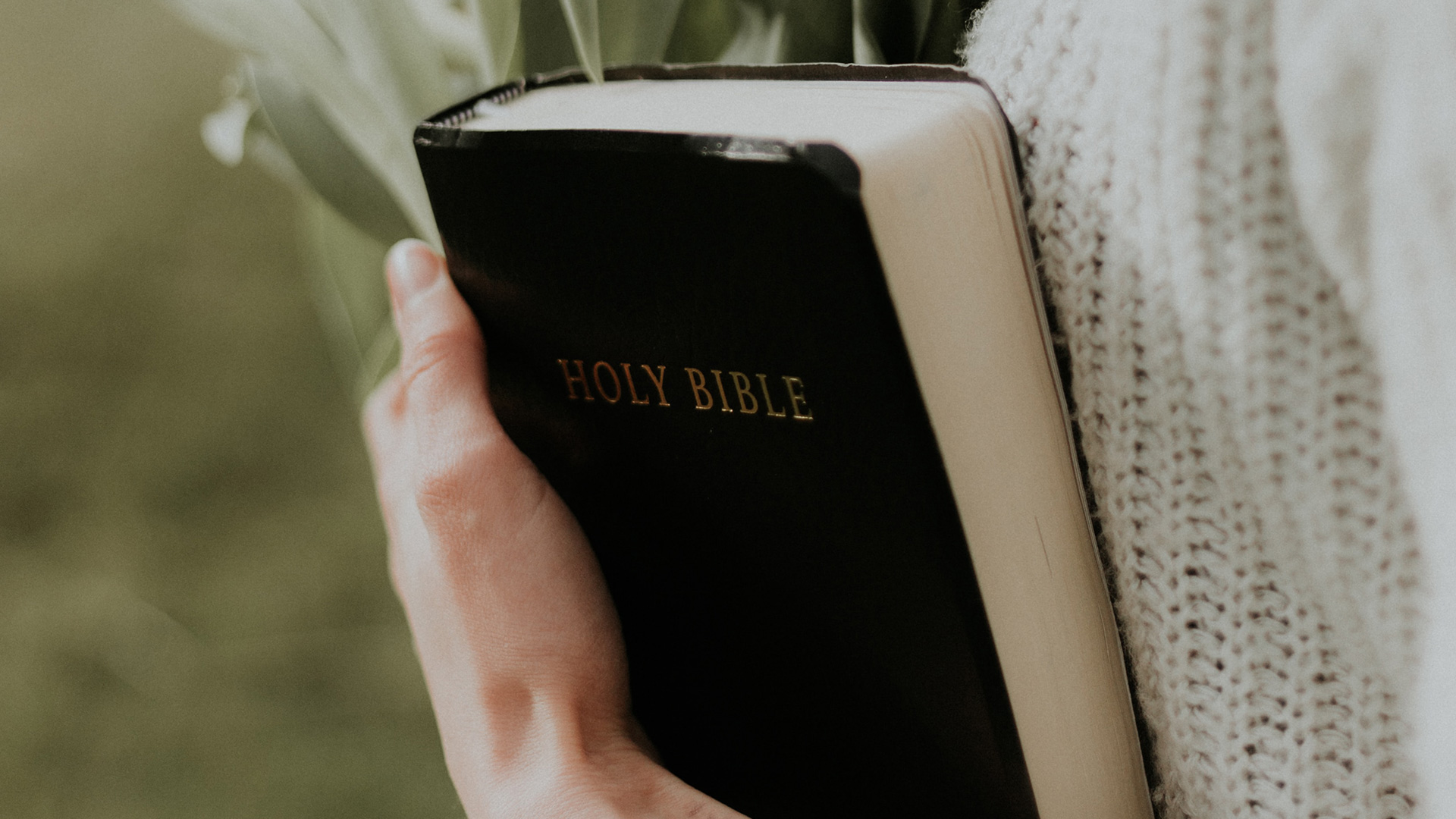 woman-holding-Holy-Bible